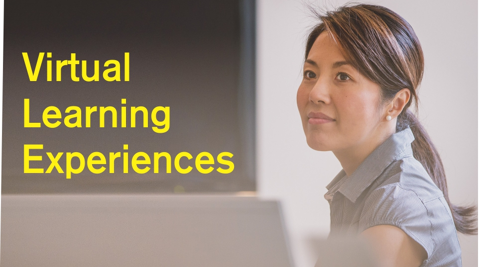 Virtual Learning Experiences